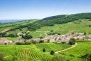 Le gouvernenement saisit le CESE sur le projet de loi d'avenir pour l'agriculture, l'alimentation et la forêt