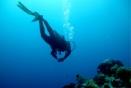 Quels moyens et quelle gouvernance pour une gestion durable des océans ?