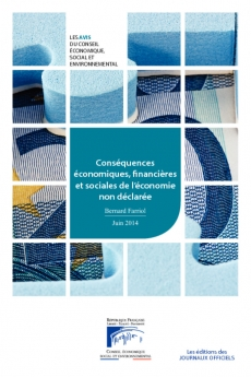 Conséquences économiques, financières et sociales de l'économie non déclarée