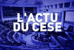 Monde de l'entreprise et concertation publique, l'actualité des débats au CESE