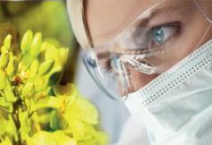 Séance du 28/03/2017 : la bioéconomie durable