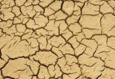 Sélection de recommandations du CESE sur le déréglement climatique et la transition écologique