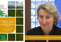 Les filières lin et chanvre au cœur des enjeux des matériaux biosourcés : les préconisations du CESE