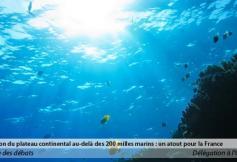 Compte-rendu de la réunion de la délégation à l'Outre-mer du 10 et 24 septembre 2013