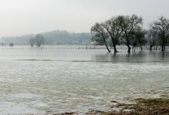Vingt ans de lutte contre le changement climatique en France