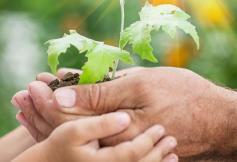 """Colloque """"Pour une transition écologique juste, les organisations de la société civile s'engagent"""""""