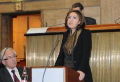 Séance plénière de la présentation du projet d'avis sur les enjeux de la prévention en matière de santé