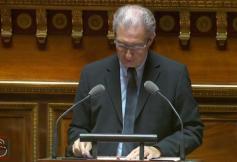 Intervention du conseiller Christian Vernaudon au Sénat