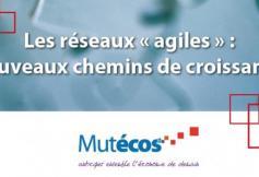 """Les réseaux """"agiles"""" - nouveaux chemins de croissance - 26 et 27 avril"""