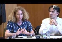 Audition de Alexis SPIRE (CNRS)  et Katia WEIDENFELD (Historienne) - Evitement fiscal