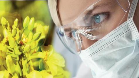 Le CESE va se prononcer sur la bioéconomie durable