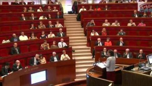 Séance plénière du vote de l'avis sur le projet de loi de programmation pour un nouveau modèle énergétique